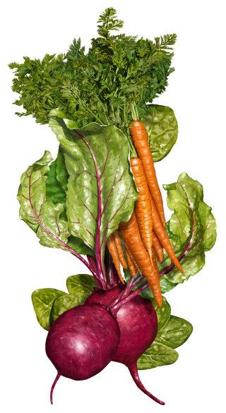 Vegetables - Food & Drink illustration