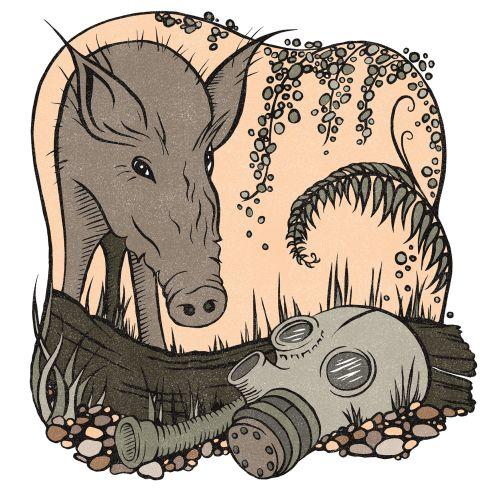 Sue Gent Animales
