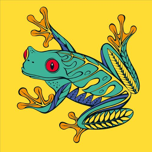 Graphic illustration of frog