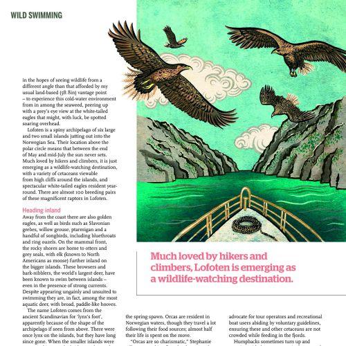 Editorial-wild-swimming