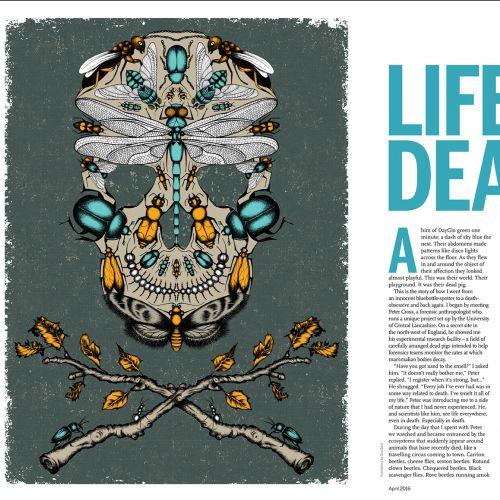 Sue Gent Verlags-, Verpackungs- und redaktionell inspirierter Illustrator. Vereinigtes Königreich