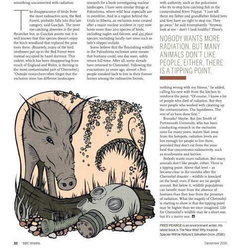 Editorial illustration of pig and mask