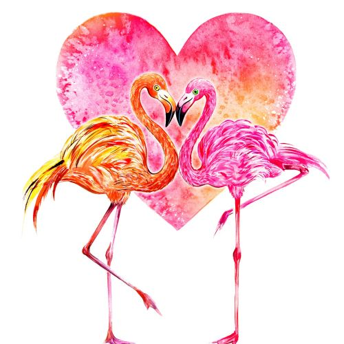 flamingos, birds, LOVE