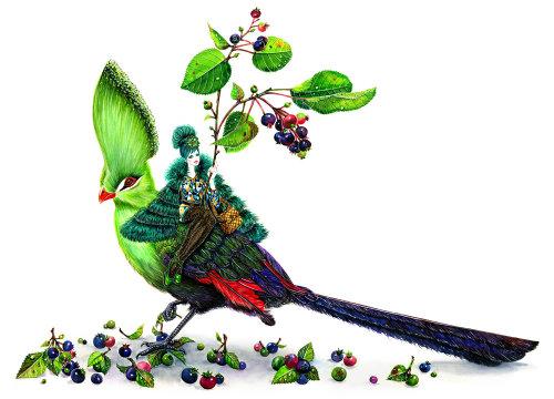 Animaux oiseau vert