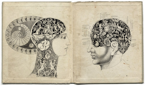 Quack Phrenology Science - Fantasy Art