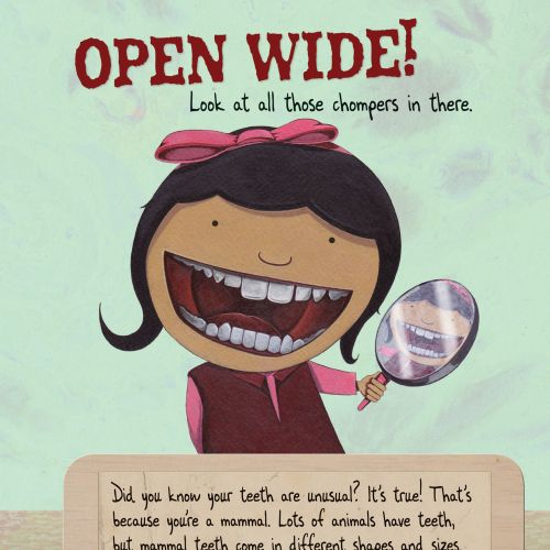 Children's book illustration for Tooth by Tooth