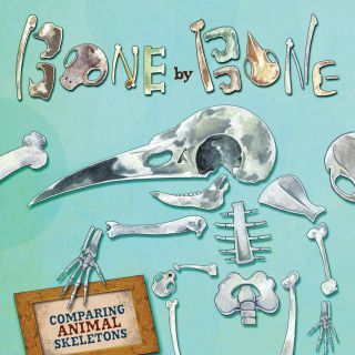 Bone by Bone book illustration by T.S Spookytooth