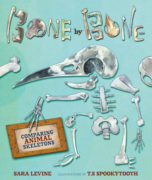 Bone by Bone book cover design