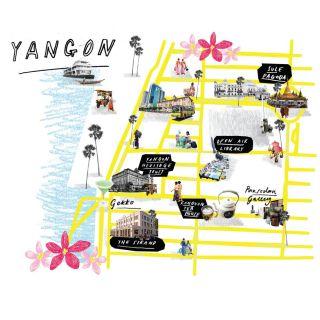 Tanya Cooper 地图