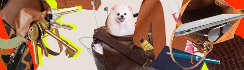 Chaves de montagem e colagem e cachorro