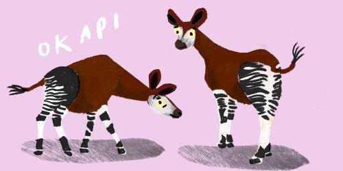 Drawing of animals Okap