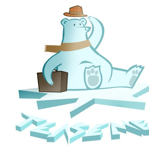 Journey of ice bear