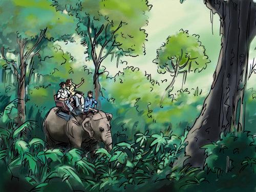 人们在森林,丛林与动物,绿树和蓝天中的大象上旅行