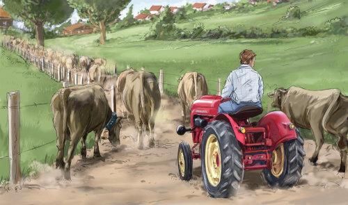男孩在拖拉机上走进农场,郁郁葱葱的绿色到处都是,水牛走在泥泞的道路上