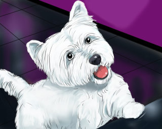 White dog looking up, small eyes opened, violet color background