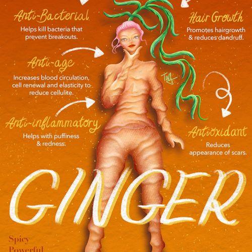 Health benefits of Ginger herbs poster art