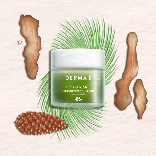 Pycnogenol, Derma-E, skincare illustration, skincare flatlay, product illustration, beauty illustrat