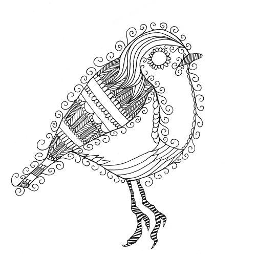 Oiseau illustration ligne animale