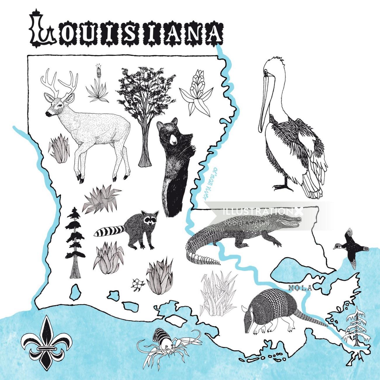 Maps Louisiana