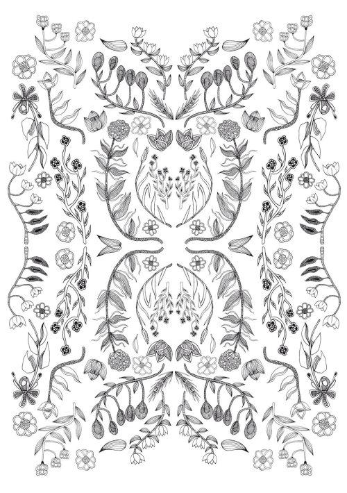 Line Illustration flowers