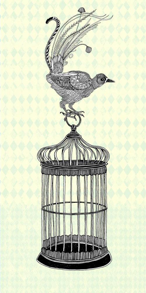 笼子里的动物孔雀