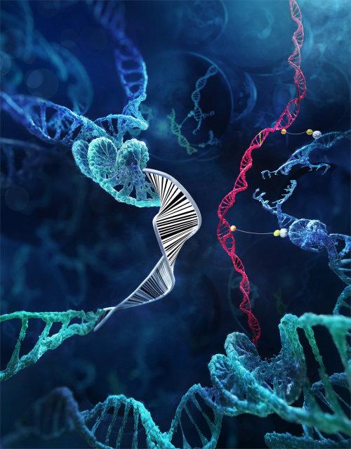 Illustration médicale des cellules du corps humain