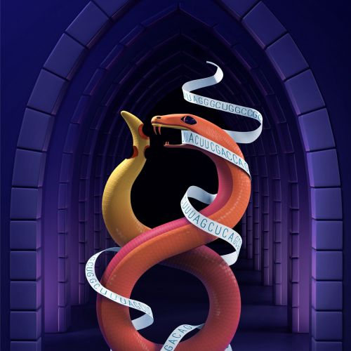 Animal illustration of snake biting tale