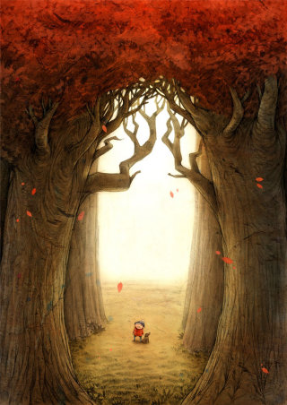 Lost In The Woods Picture Book