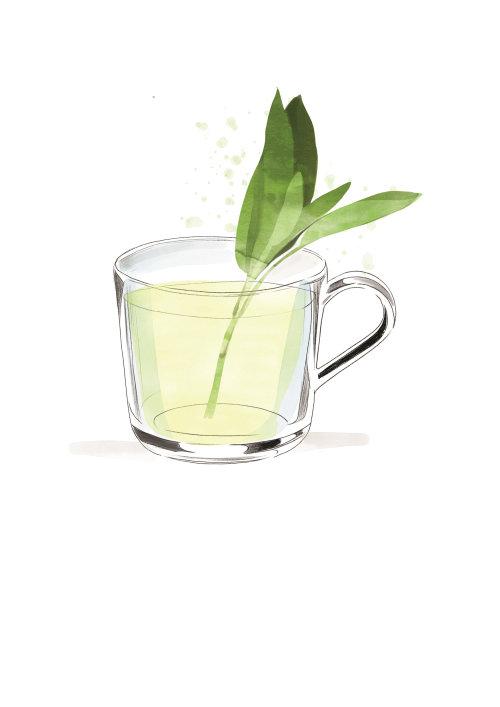 Tea cup line drawing