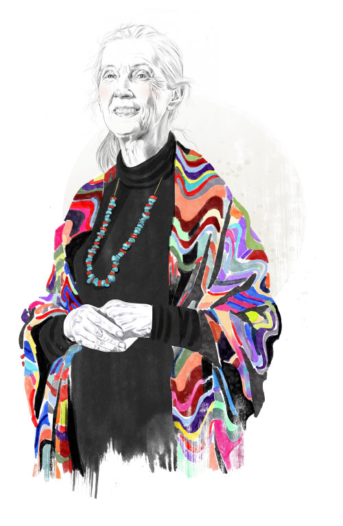 Ilustración de retrato editorial de Jane Goodall para Readers Digest US
