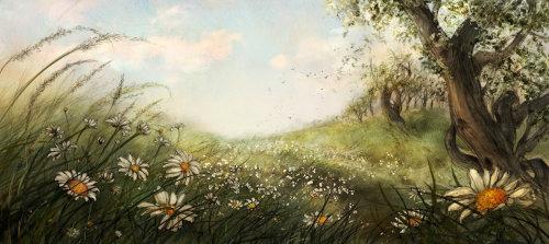 Enfants The Wild Daisy Field