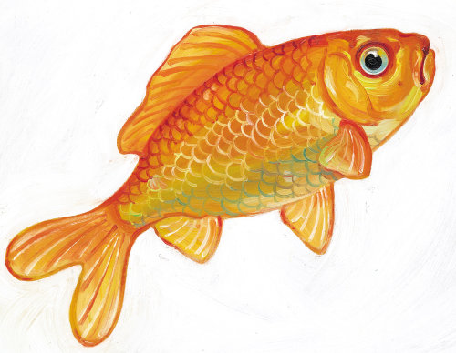 arte de colorfill de Goldfish