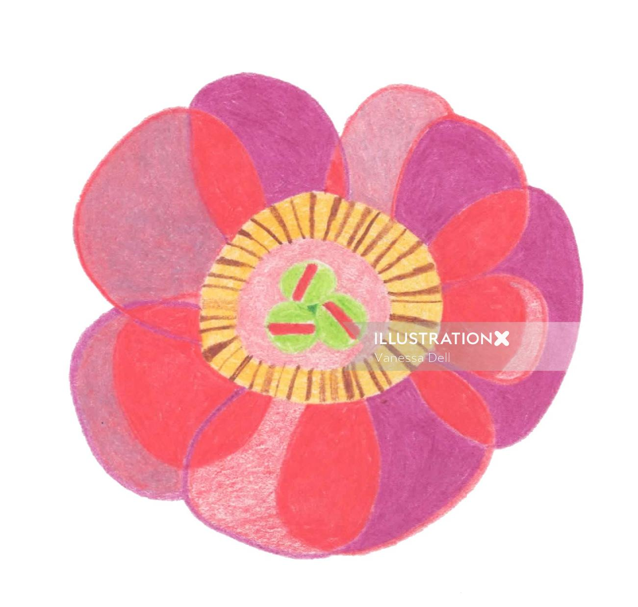 Illustration of abstract Peony