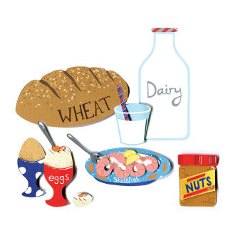 food, dairy, peanuts, shellfish, eggs, milk, wheat, bread, allergies, allergy, milk, peanut butter