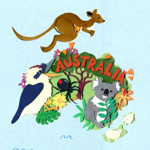 map, australia, kangaroo, koala, spider, collage, sheep, nature,