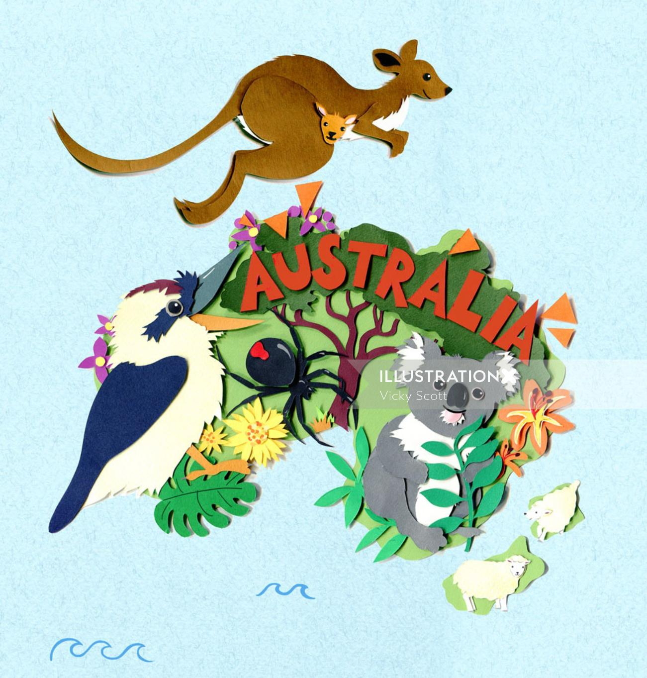 map, australia, kangaroo, koala, spider, collage, sheep, nature,