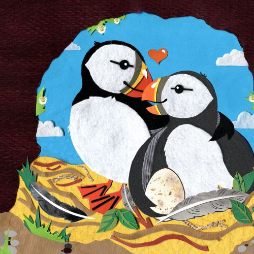 puffins, birds, egg, baby bird, family, kids, childrens, story, feathers