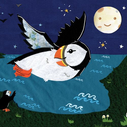 puffins, birds, night, nature, kids, moon,sea