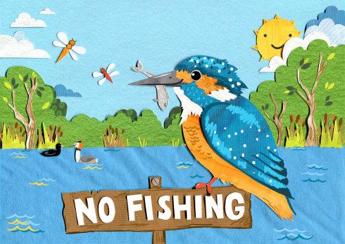 livro infantil, animais selvagens, natureza, martinho pescatore, animais selvagens britânicos, pássaros britânicos, sol, dia de sol, rio