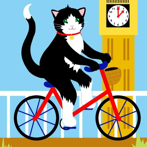 cat, big ben, london, bike, bicycle, cycling