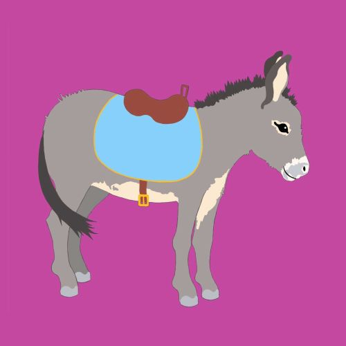 donkey, saddle