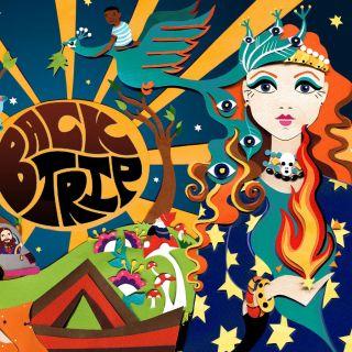 60's, skulls, sun, bus, hippies, hippy, psychedelic, music, festival, birds, pandas, stars, night