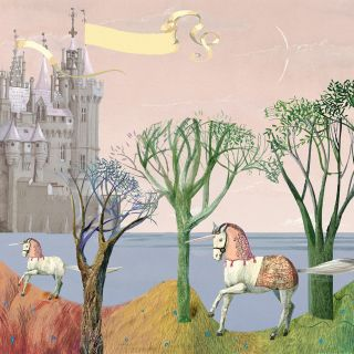 Princesses and Unicorns Childrens book Graphic design