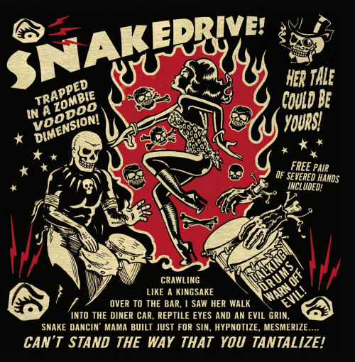 Cover design for snake drive