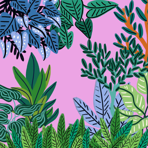 Abstract illustration of different plant leaves