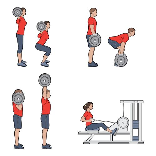 Vector art of people workout in gym