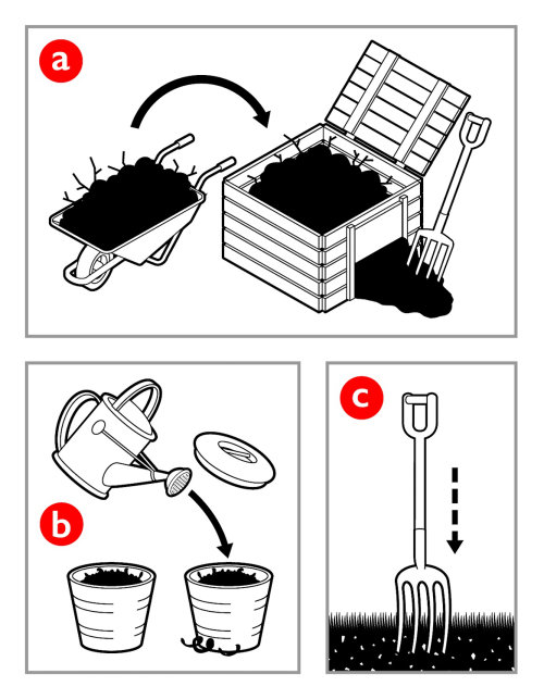 Infographic illustration of Gardening compost