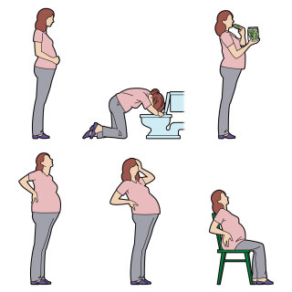 Pregnancy stages infographics by Willie Ryan