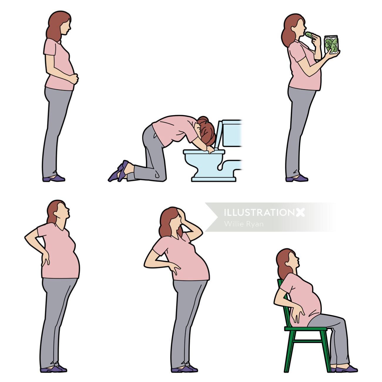 pregnancy stages Willie,Ryan,illustrator,illustration,graphic,children's book,people,figures,health,