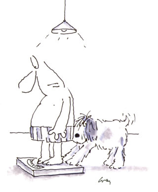 Man and dog at personal weighing machine  - Cartoon illustration by Gray Jolliffe